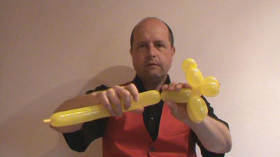anleitung tiger aus modellierballon luftballon ballon drehen knoten modellieren. Black Bedroom Furniture Sets. Home Design Ideas